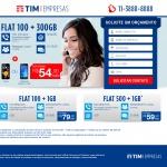 Landing Page - Tim